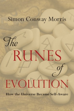 runes_of_evolution